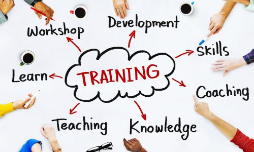 Training Services Abt